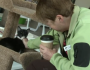 This Cat Cafe' Is a Hit With Coffee Drinkers